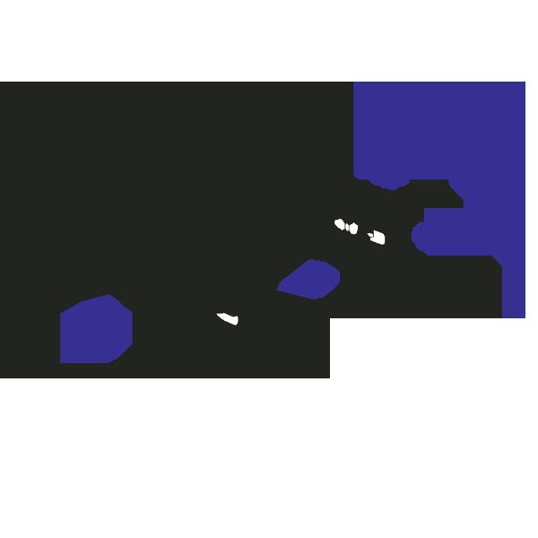 кабеленесущие системы лестничного типа h50